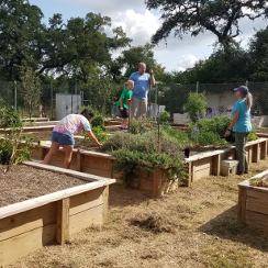 Employee Garden Workday